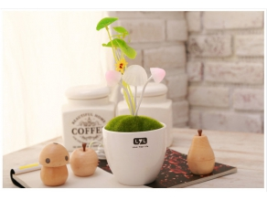 RM29.90 for Avatar Mushroom Sensor LED light (worth RM49.90)