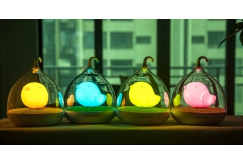 RM49.90 for Rechargeable Birdcage Lamp (worth RM89.90)